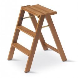 Steppladder